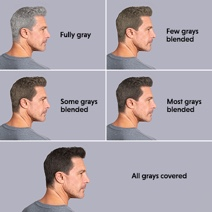 Man showing gradual blending grays